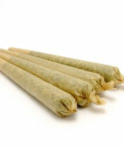 Pre-Rolled Joints